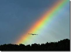 arco-irisrrrr