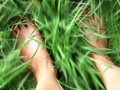 2010.08.02_Grass