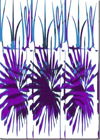 palm leaf 1a