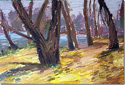 November, Trees  by John Huber