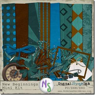 NS_DSI_NewBeginning