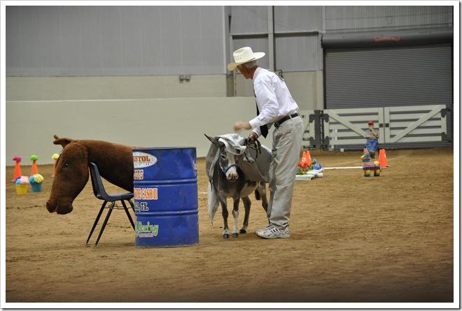 Donkey  show 269