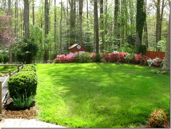 large-grassy-backyard-landscaping-3