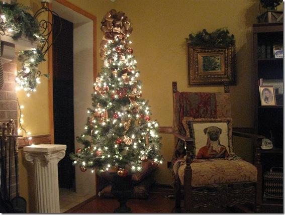 more christmas 2009 046