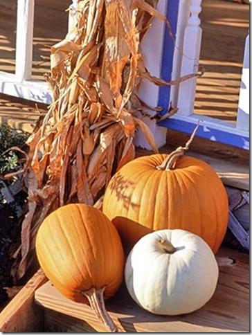 bhg pumpkin trio