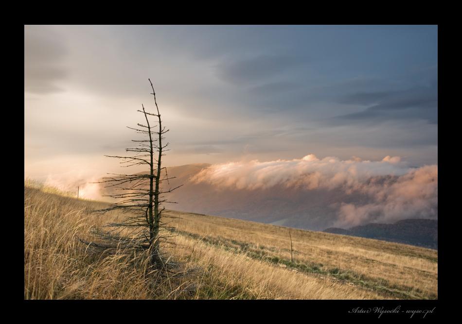 Artur Wysocki fotografie - Bieszczady