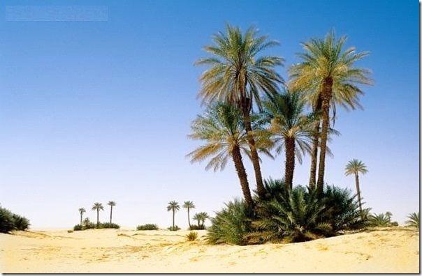 20 most incredible desert oasis28