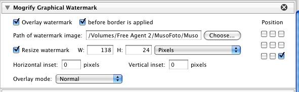 export3.jpg