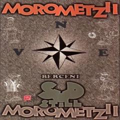 Morometzii-Sud-still