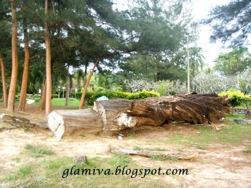 date at tanjung aru beach kota kinabalu sabah january 2011