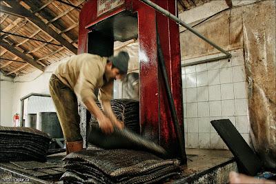 Zeytinyağı fabrikası