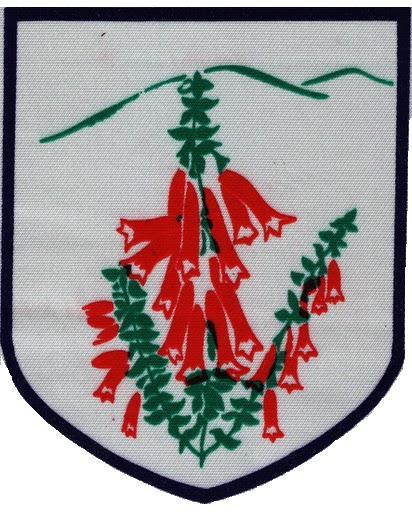 Heathmont Lions Logo