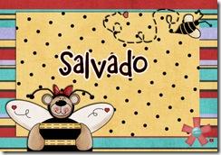 identificadores_salvado