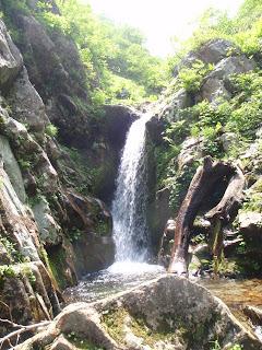 落ち口はハングし、垂直に落ちる滝。左岸を巻いて降りた。