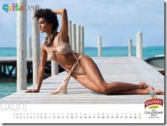Kingfisher Calendar 2011_10