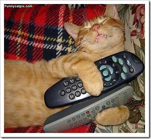 My_Remotes