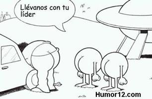 humor elgallinero (3)
