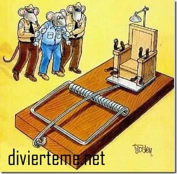 humor mascosasdivertidas blogspot (S1) (2)