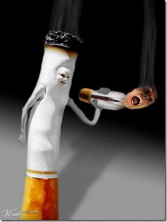 sin tabaco migallinero.blogspot (21)