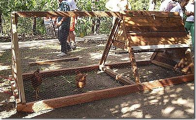 gallineros. elgallinero.blogspot (97)