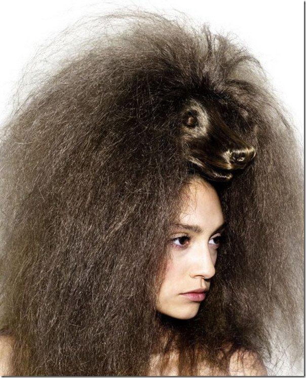 peinados con animales en la cabeza (7)