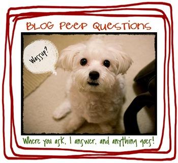 blogpeeprileylogo