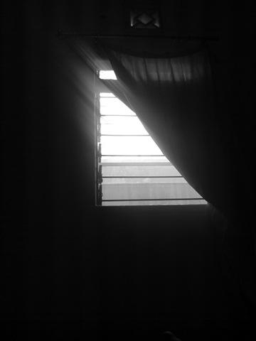 black-white-windows