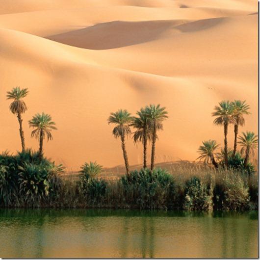 dvenadcat-samyh-neveroyatnyh-oazisov-pustyni