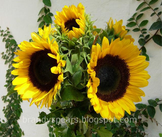 wedding centerpiece idea sunflower topiary