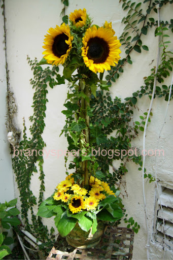 Photo detail Outdoor shot of sunflower topiary with natural lighting