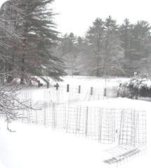 2010 snowstorm 3