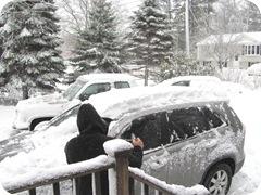 2010 snowstorm7