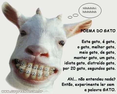 Surpreenda.com.br - Imagens para seus recados!