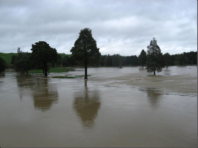 flood july 10 014