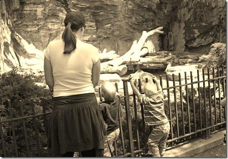 2011-05-13 Zoo (40)