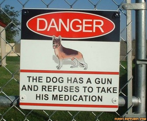 Photo of a funny beware of dog sign