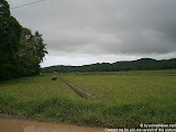 nomad4ever_philippines_camiguin_CIMG0554.jpg