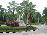 nomad4ever_indonesia_pulau_bintan_IMG_2749.jpg