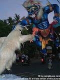 nomad4ever_indonesia_bali_ogohogoh_CIMG2722.jpg