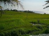 nomad4ever_indonesia_bali_landscape_CIMG1741.jpg