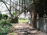 nomad4ever_indonesia_bali_landscape_CIMG1577.jpg