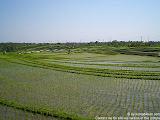 nomad4ever_indonesia_bali_landscape_CIMG1641.jpg