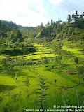 nomad4ever_indonesia_bali_landscape_CIMG1923.jpg