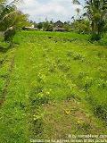 nomad4ever_indonesia_bali_landscape_CIMG1769.jpg