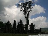 nomad4ever_indonesia_bali_landscape_CIMG1831.jpg