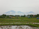 nomad4ever_indonesia_bali_landscape_CIMG2109.jpg