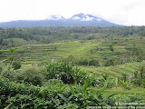 nomad4ever_indonesia_bali_landscape_IMG_2013.jpg