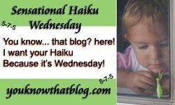 haikuwednesday32