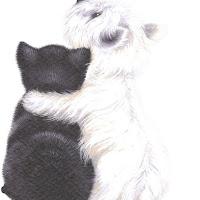 MJR_black-and-white_best-friends.jpg