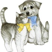 CatDog's1.jpg